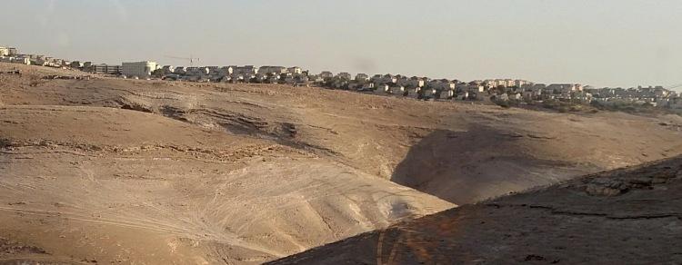 jewish settlement in palestine day eight