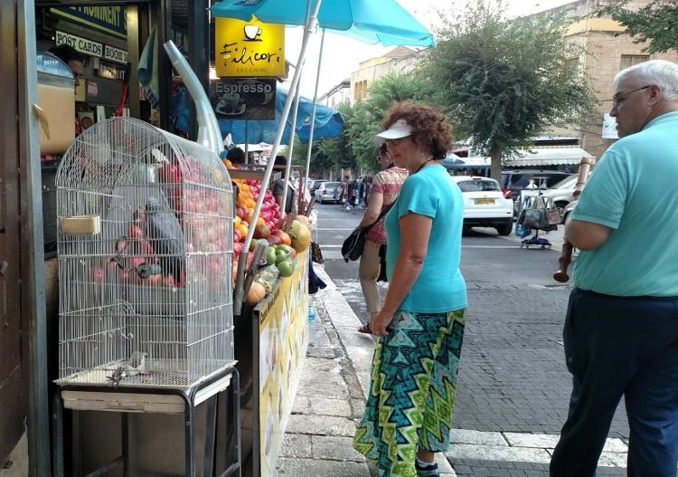 nazareth street day four
