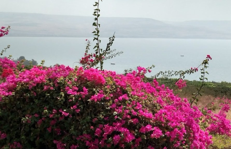 sea of galilee day five