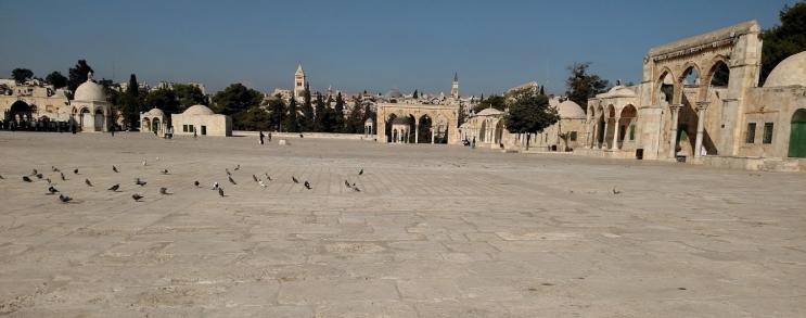 vast temple mount day seven