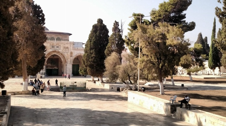 temple mount looking south